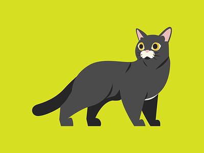 black cat minimal animal cats black cat editorial digital icon vector illustration