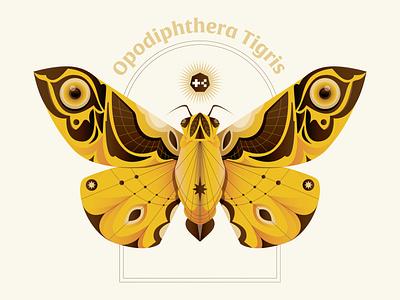 Opodiphthera Tigris yellow nft moth butterfly animal bug digital icon vector illustration
