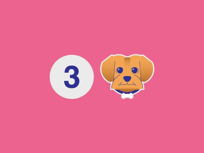 3 Invitations number icon animal minimal shot draft invitation pink yorkie dog dribbble