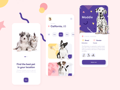 Pets Adoption App cats product design pet adoption pet care petshop dogs pets animals app minimal concept colors ux ui design