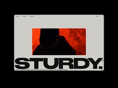 STURDY.CO HOME home hero gif website motion grid ui portfolio design typography