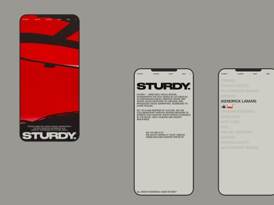 STURDY, MOBILE mobile home hero gif website motion grid typography design