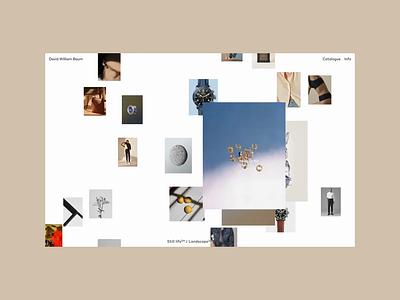 David William Baum, Info fashion motion grid ui portfolio design typography editorial