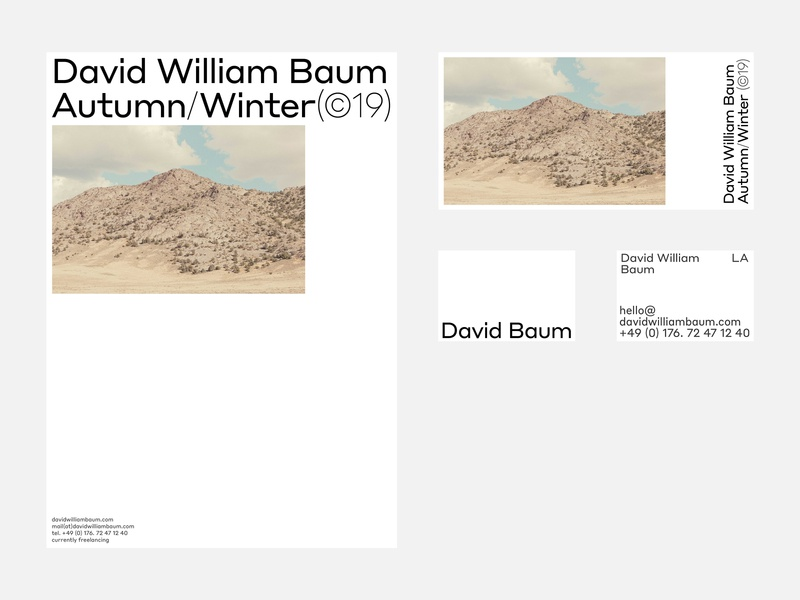 David William Baum, Printed Materials website grid motion portfolio design typography