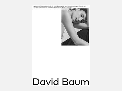David William Baum, Poster