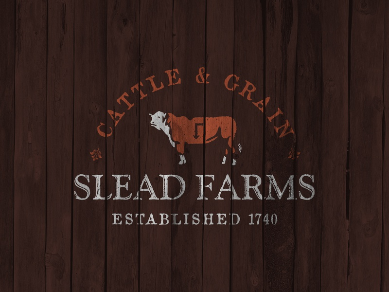 Slead Farms heritage family grain cattle cow brand identity logo farm