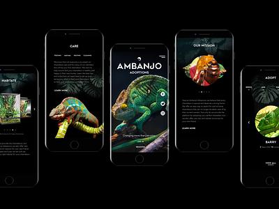 Ambanjo Adoptions Website Design lizards animals webpage branding html desktop mobile interactive design ui design ux design website adoption chameleons