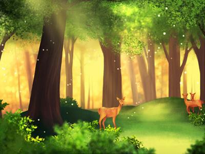 Forest forest deer