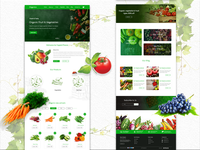 e-Commerce Organic Vegetable and Fruits store