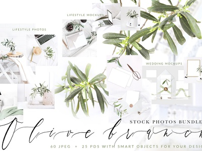OLIVE BRANCH. 60 PHOTOS + MOCKUPS lifestyle mockup styled stock photography social media templates template wedding invitation invitation design lifestyle wedding mockup mockups wedding cards wedding