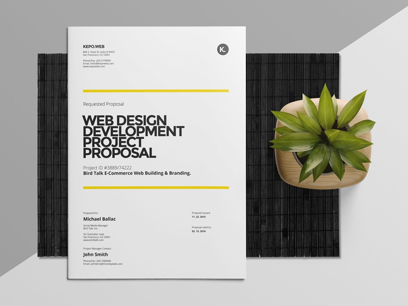 Web Design Proposal By Social Media Templates Dribbble Dribbble