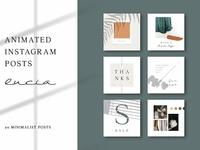 ANIMATED Instagram Posts – Lucia