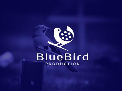 Blue Bird Production logo design 99designs minimal logo blue film blueprint film logo wild bird wildlife videography logo cinema4d production logo blue bird productions bird logo blue bird logo branding logotype typography creative logo creative logodesign logo