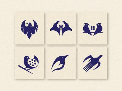 6 Bird Logo/Marks
