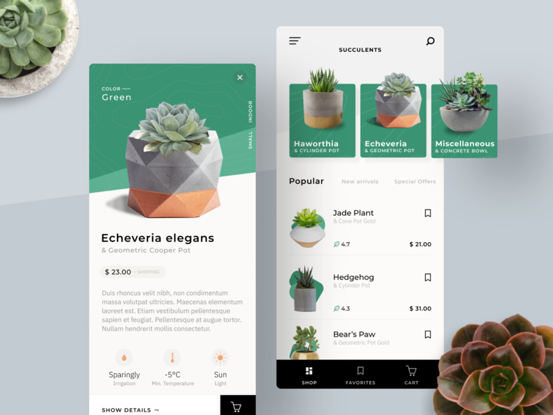 Plant Store App figma shop plant cards app interface ui