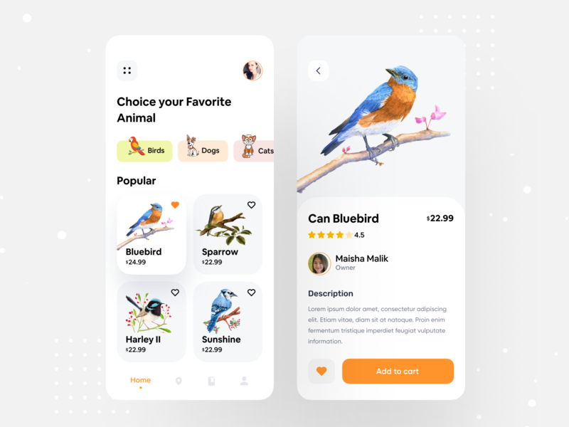 Animal App Exploration uidesign exploration bird illustration birds animal character animal art animal bards ecommerce colorful app app  design userinterface ux design ui  ux user interface design user experience user interface ui design ux ui