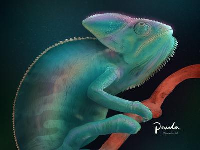 Iridescent Chameleon