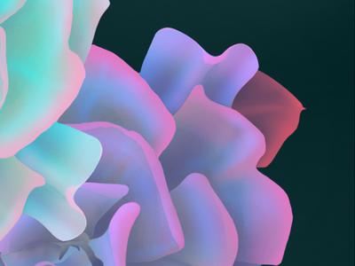 Flower Puff Detail