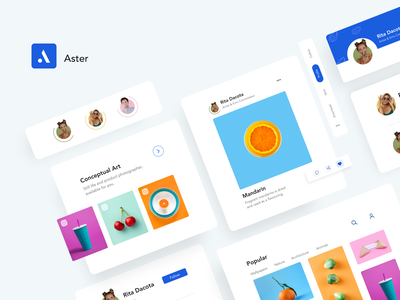 Aster slider flat design colors photo uidesign webdesign website minimal flat typography vector branding icon app ui design