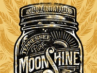Moonshine design texture web
