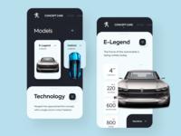 Peugeot Consept Cars