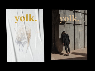 Yolk Literary Magazine branding caitlin aboud simple illustration design