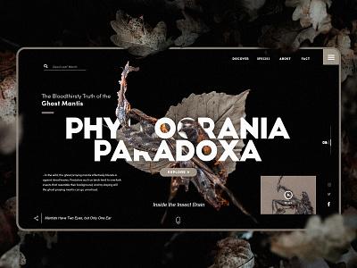 Ghost 👻 Mantis ux ui black web landing page art typography vietnam illustration design