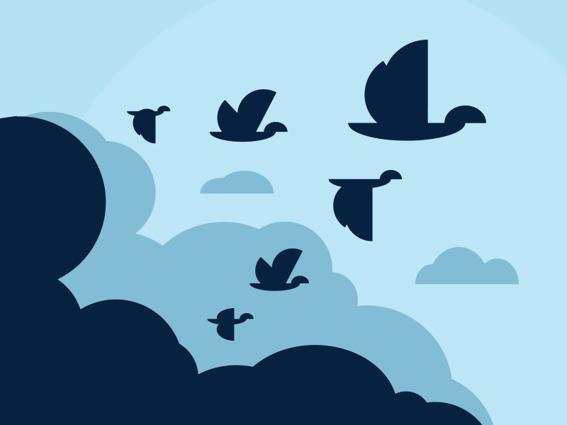 Branding WP Migrate DB Pro branding wordpress delicious brains birds fly illustration triangle geese migrate vector icon logo
