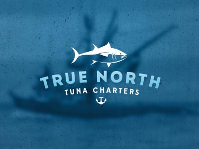 Truenorth logofinal