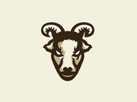 Mascot Logo for Toraki