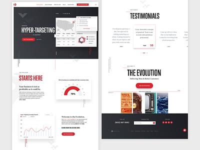 Hyper Targeting Landing Page website design web design webdesign website data hypertargeting marketing agency marketing site data visualization user interface design ux ui