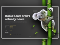 Koala Page