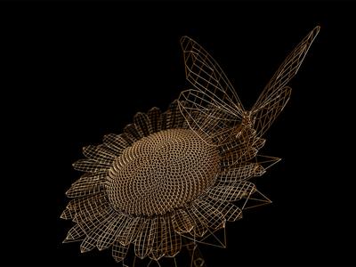 Style frames   C4D   Arnold renderer   1 renders rendering styleframes metal gold wireframe sunflower butterfly c4d 3d cinema 4d