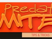 Predatory Mite Tips