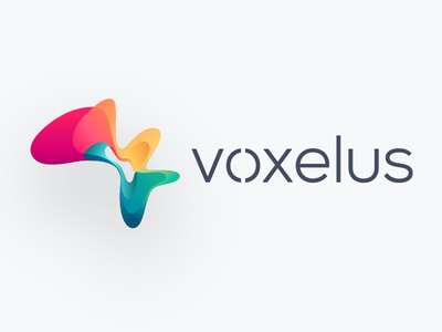 Voxelus mark logo abstract colorful fluid