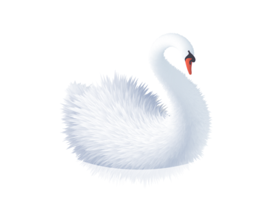 Swan blend roughen swan illustrator vector