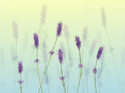 Lavender Speedpaint speedpaint flowers lavender