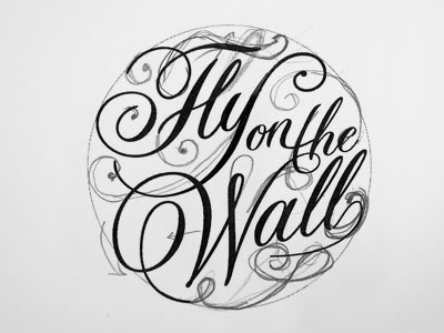 Flyonthewall sketch