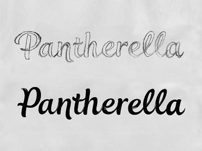 Pantherella Sketch 1 sketch custom type hand drawn script bespoke branding calligraphy hand lettering logotype lettering logo type typography