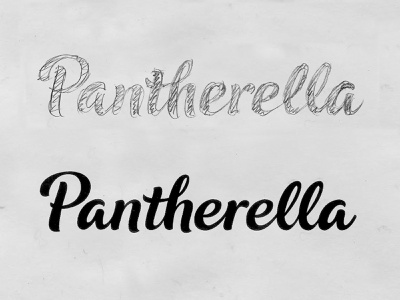 Pantherella Sketch 2 hand crafted brand sketch custom type hand drawn script bespoke branding calligraphy hand lettering logotype lettering type logo typography