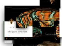 Beetlogy web concept