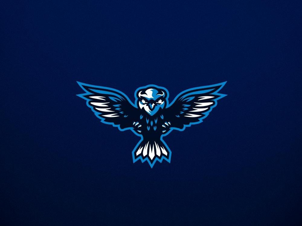Owl Masco lOGO owl logo logo design logo illustration esports design