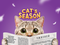 Package | Cat's season