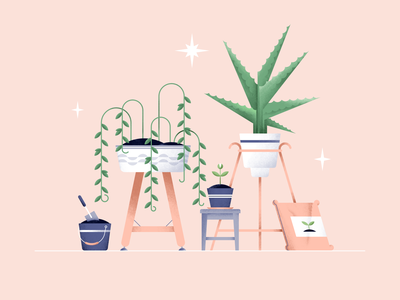 New life aloe fertilizer ground vector stars pot plants pattern illustration greens garden flowers flat digital design color