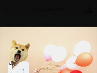 Pixels style gallery profile popup2