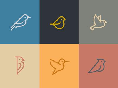 Birds birds colors icons wings parrot dove hummingbird woodpecker deiv