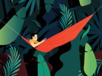 Into the tropics