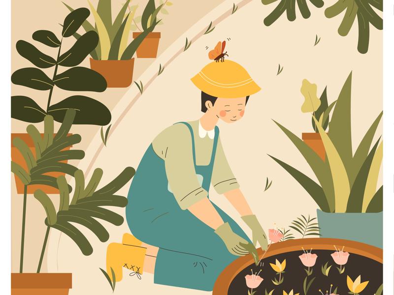 Meet the team botanical plant gardening illustration