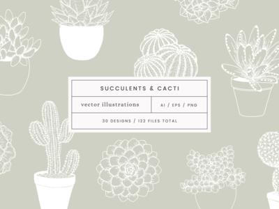 Succulents & Cacti Vector Illustrations