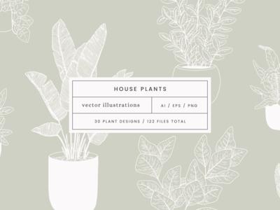 Houseplants Vector Illustrations